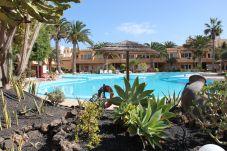 Apartamento en Corralejo - Corralejo Papaya Dunes Apartment with Pool